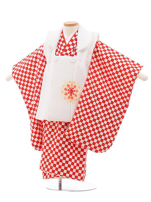 七五三(3歳女子被布) 3535 白×赤白 市松