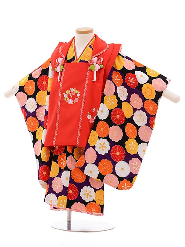 七五三レンタル(3歳女児被布)3539 式部浪漫 赤×パープル 花