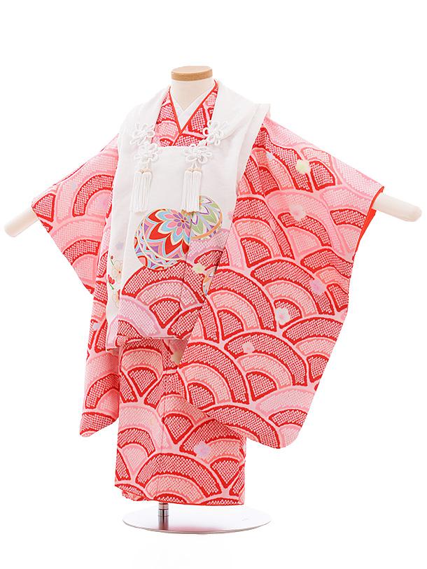 七五三レンタル(3歳女児被布)3556 式部浪漫 白×赤ピンク 波