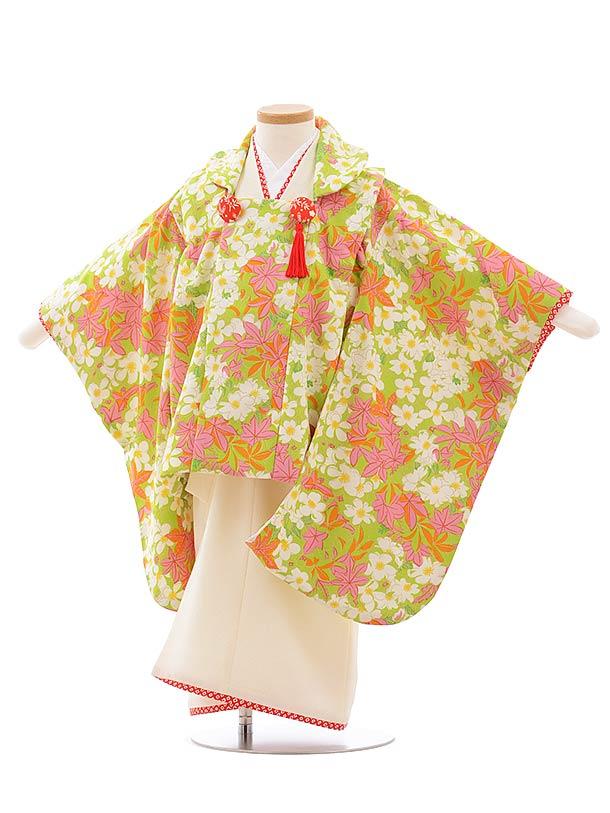 七五三レンタル(3歳女児被布)3595 HAIBARA 袖付き被布 グリーン 楓