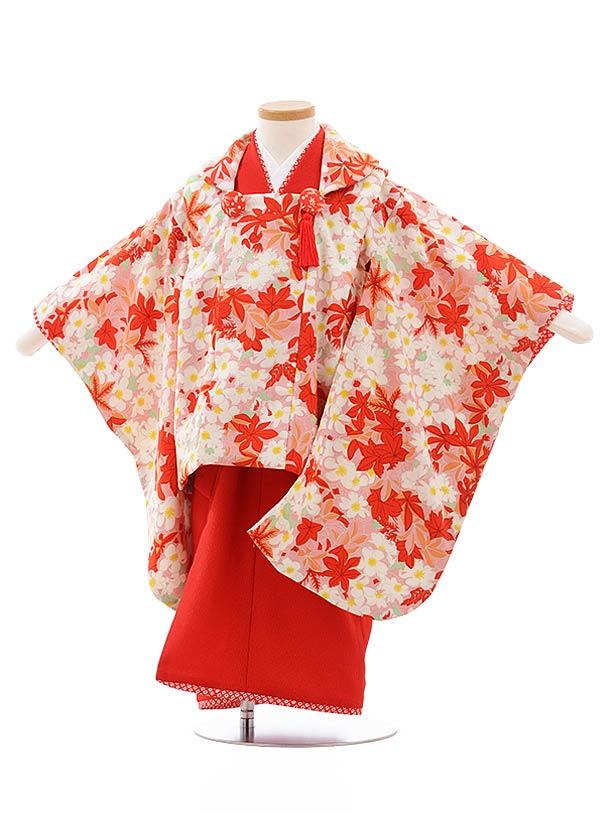 七五三レンタル(3歳女児被布)3596 HAIBARA 袖付き被布 ピンク 楓