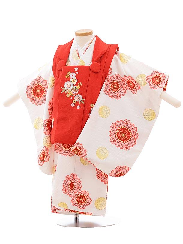 七五三レンタル(3歳女児被布)3610 赤×白地 桜