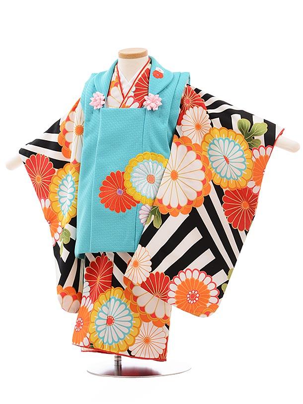 七五三(3歳女被布)3637 花わらべ ターコイズ×黒縞 菊