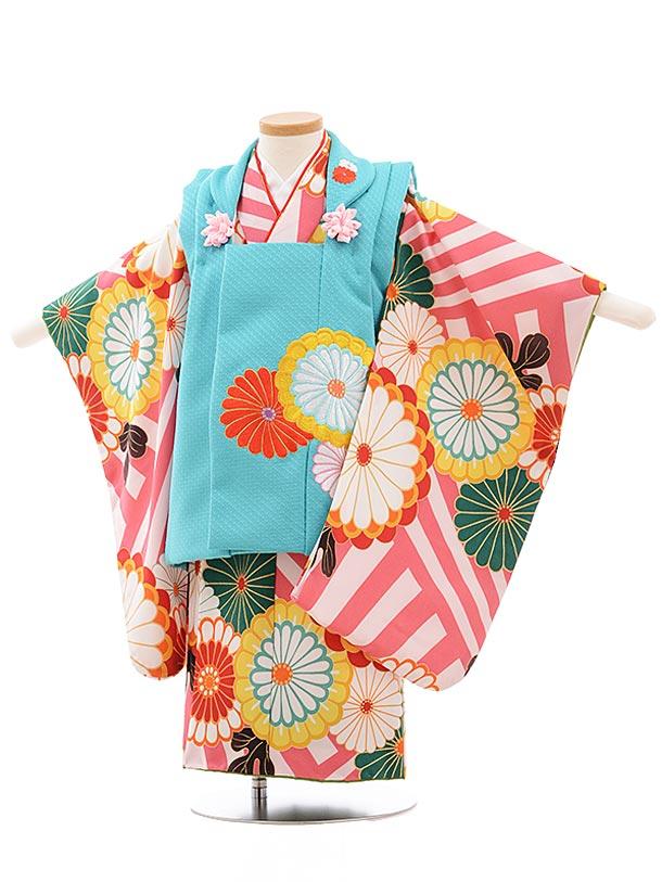 七五三(3歳女被布)3638 花わらべ ターコイズ×ピンク縞 菊