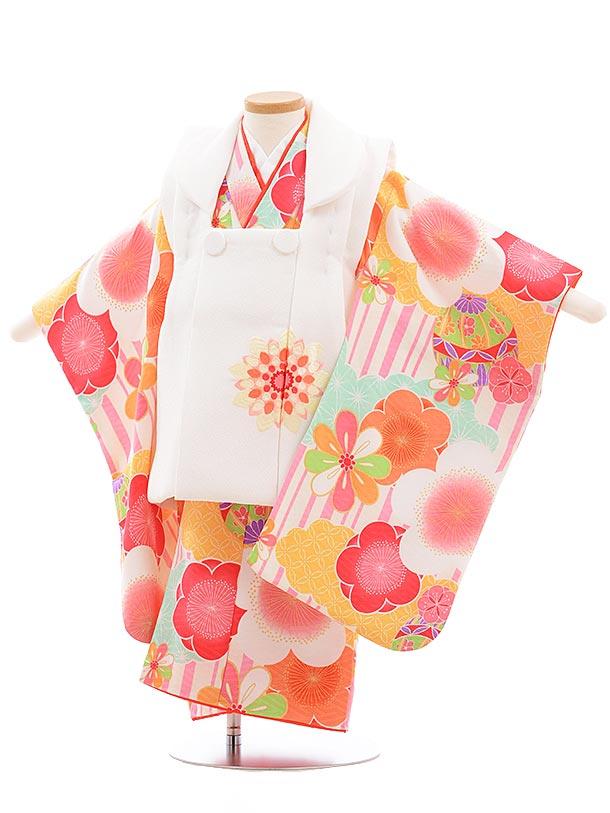 七五三(3歳女被布)3645 白×ピンクストライプ 梅