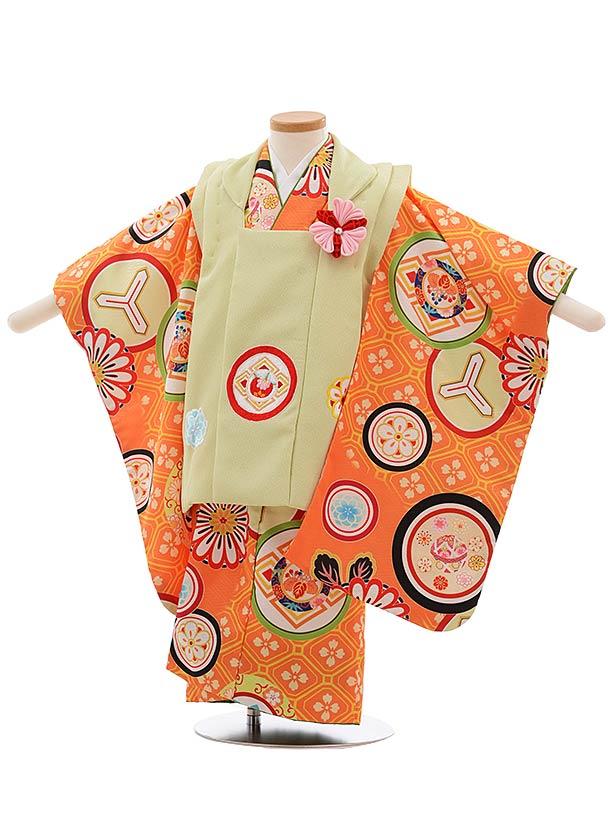 七五三(3歳女被布)3655 川栄李奈 グリーン×オレンジ 丸紋