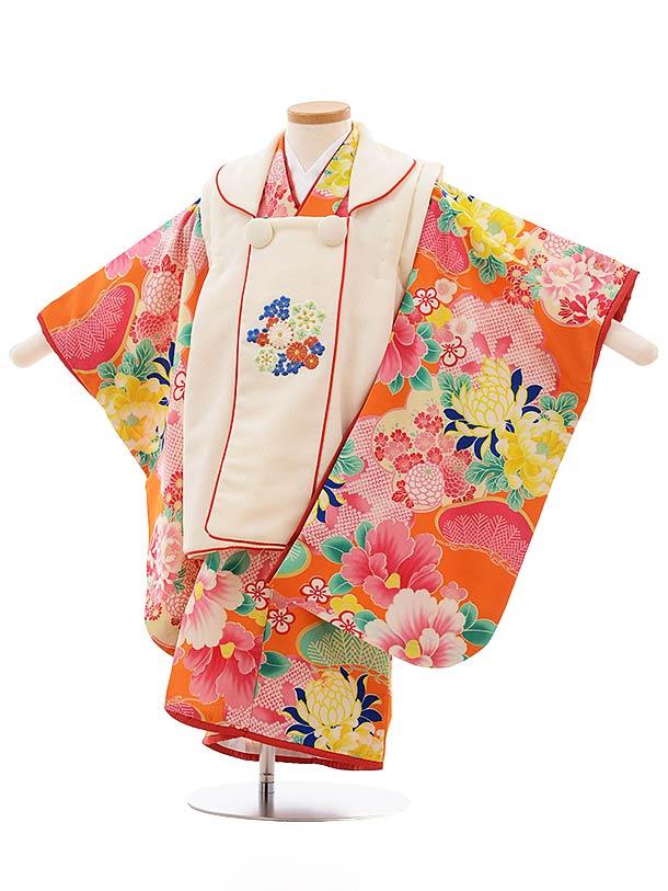 七五三(3歳女被布)3656 にこるん クリーム色×オレンジ 菊 椿