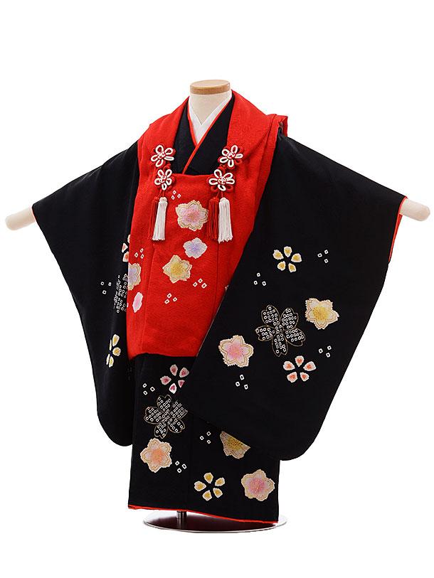七五三(3歳女被布)3659 正絹 赤×黒地 桜