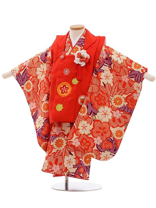 七五三(3歳女被布)3662 正絹 紅一点 赤×クリーム地 赤梅