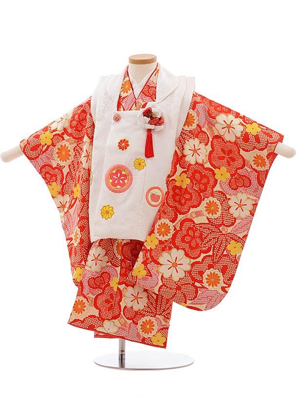 七五三(3歳女被布)3663 正絹 紅一点 白×クリーム地 赤黄梅