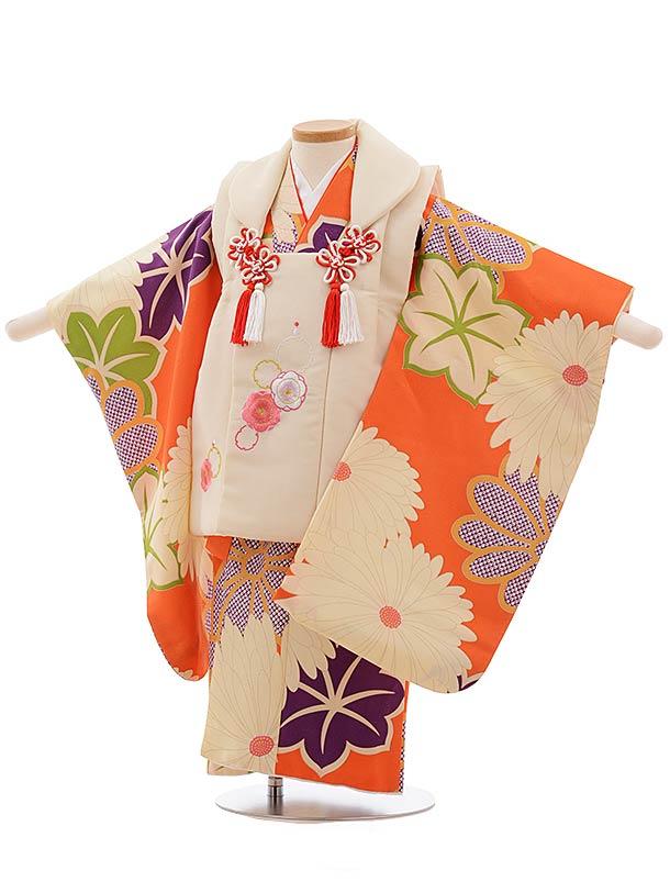 七五三(3歳女被布)3675 クリーム色×オレンジ地 菊
