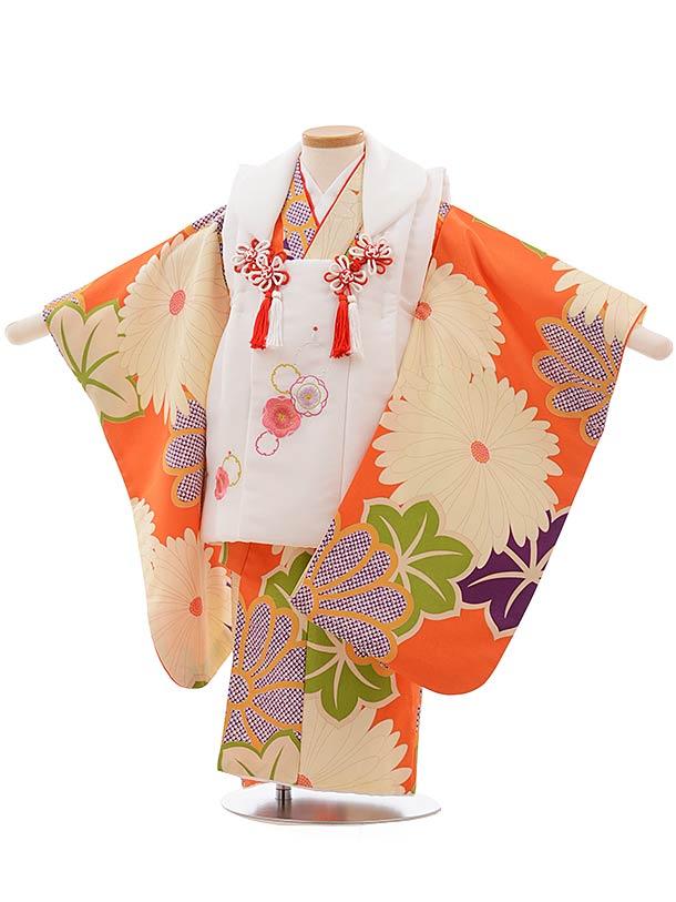 七五三(3歳女被布)3676 白×オレンジ地 菊