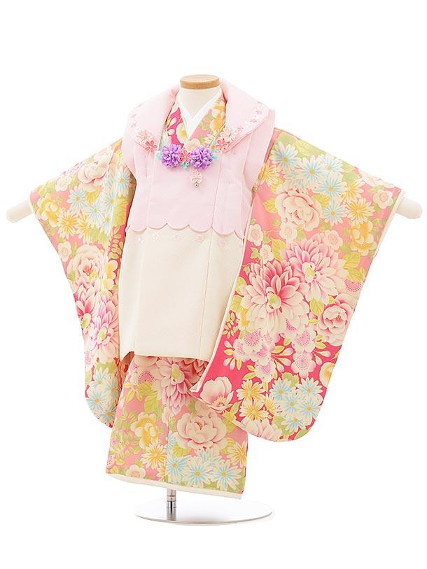 七五三レンタル(3歳女の子被布)3750 乙葉 段々色 ピンク 花