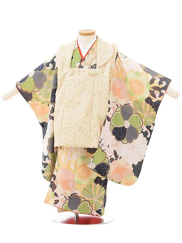 七五三レンタル(3歳女児被布)3792 KAGURAグリーン×菊に桜