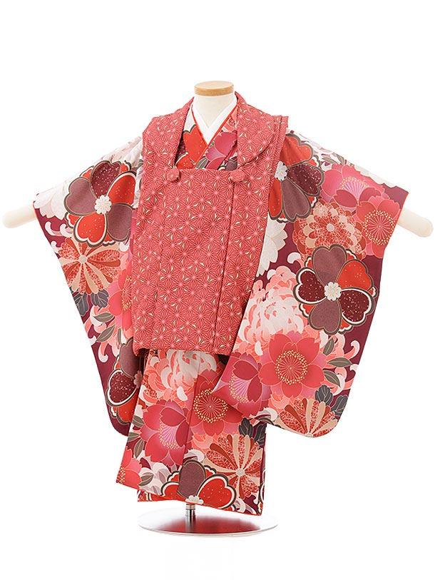 七五三レンタル(3歳女児被布)3793 KAGURAレッド×菊に桜