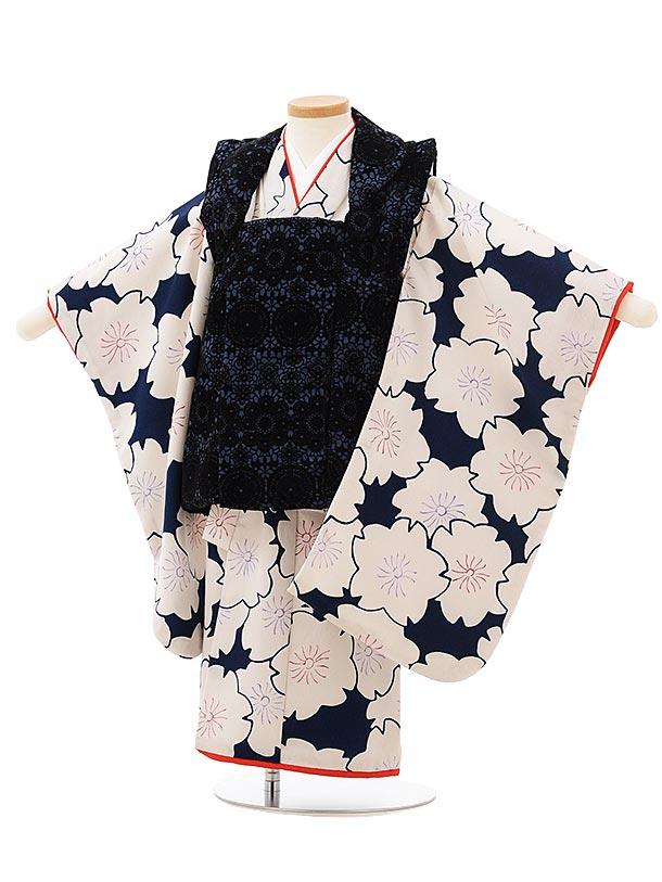 七五三レンタル(3歳女児被布)3821紺レース調×紺地桜