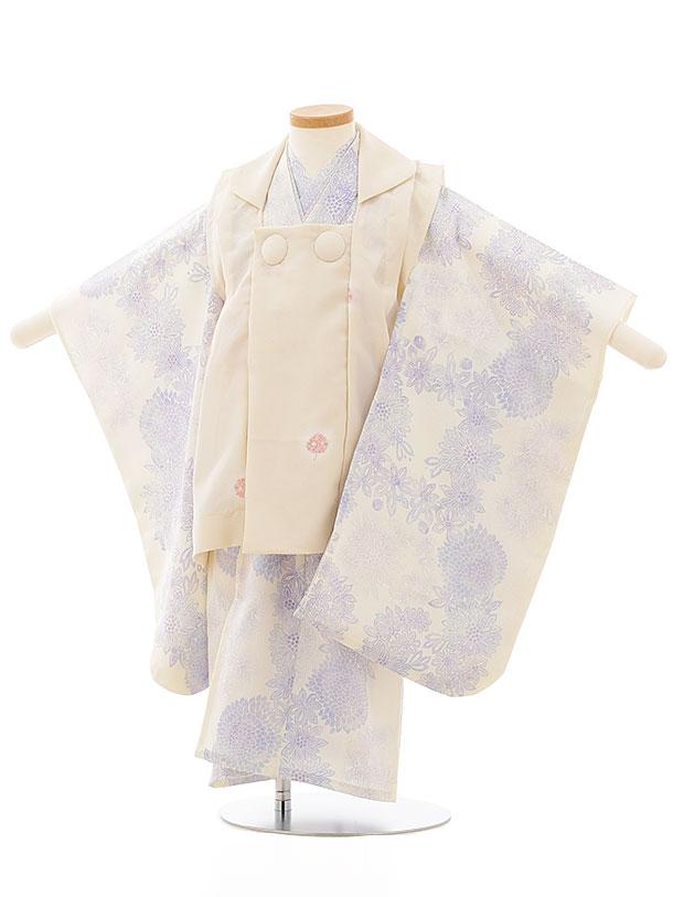 七五三レンタル(3歳女児被布)3859 夏物 アイボリーxクリーム地青紫小菊