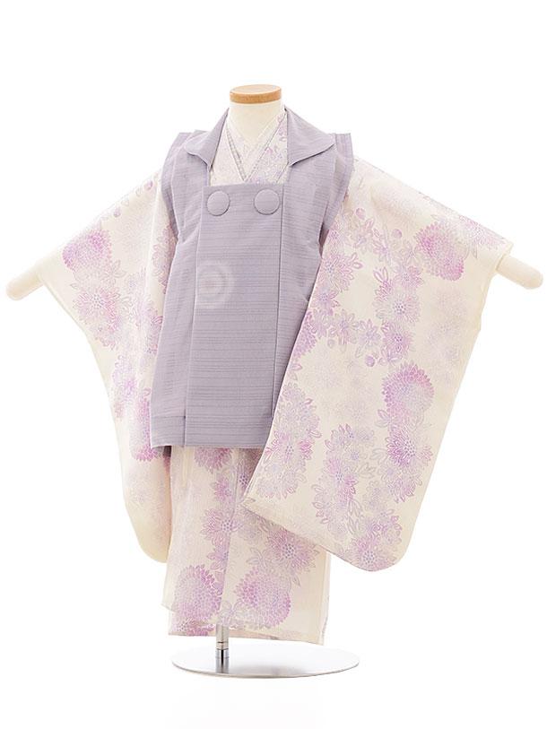 七五三レンタル(3歳女児被布)3860 夏物 パープルxクリーム地ピンク紫小菊