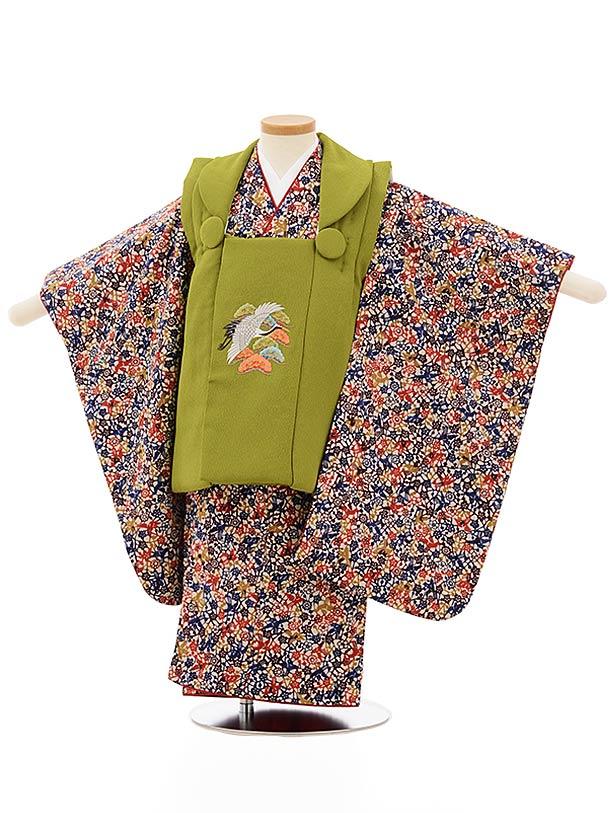 七五三レンタル(3歳女児被布)3869抹茶色刺繍鶴x多色梅小鳥