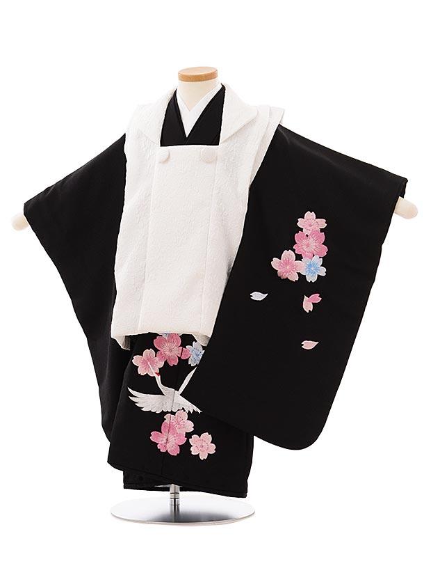 七五三レンタル(3歳女児被布)3903白x黒刺繍桜鶴