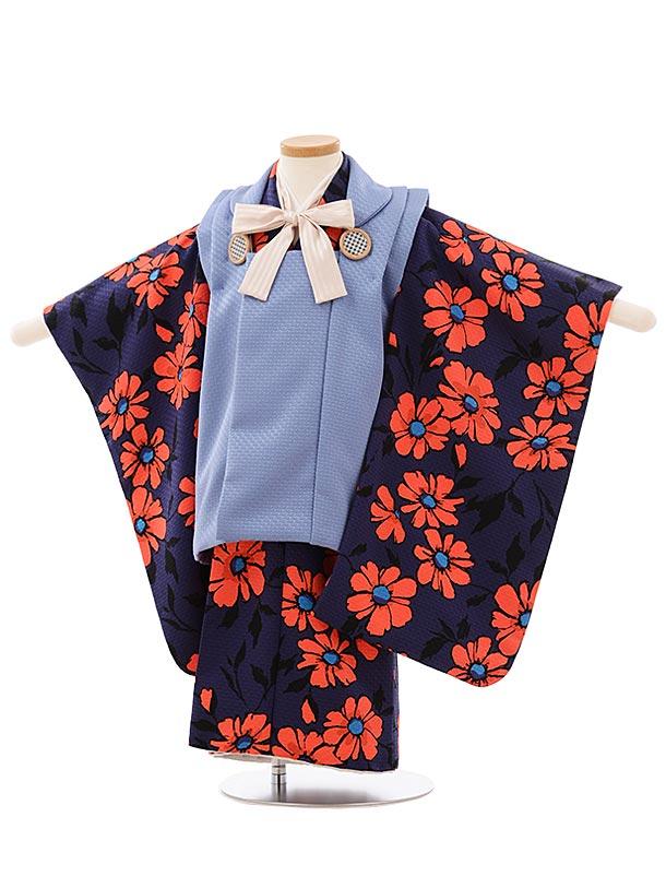 七五三レンタル(3歳女児被布)3907ラフィネココ ブルーxネイビー花