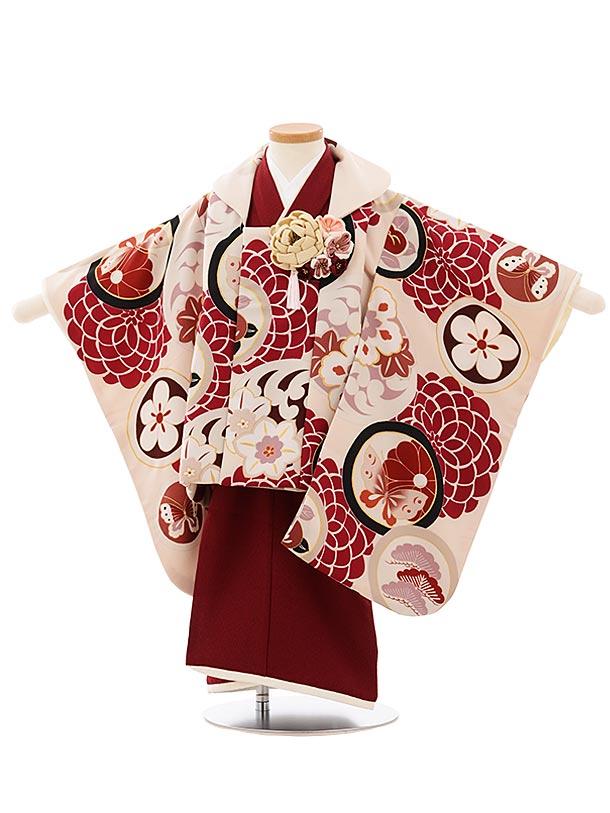 七五三レンタル(3歳女児被布)3923プチプリ 袖付き被布ベージュxボルドー丸紋