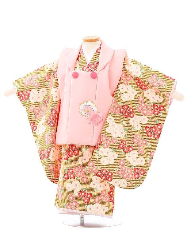七五三レンタル(3歳女児被布)3971ピンクxからし色ストライプ小菊