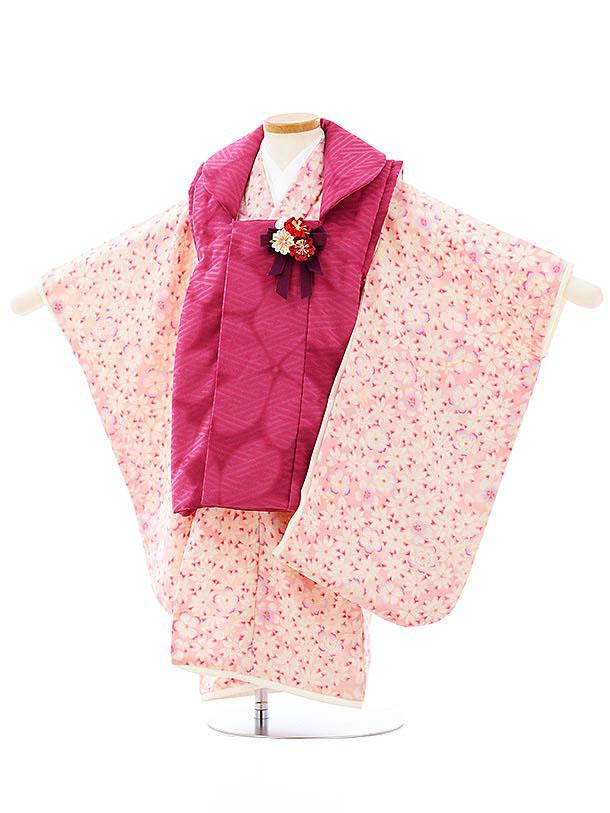 七五三レンタル(3歳女児被布)3981華徒然 赤紫xピンク桜づくし