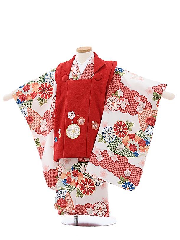 七五三レンタル(3歳女児被布)4008 蒼 赤刺繍菊梅x白地古典花