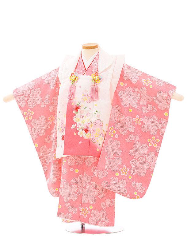 七五三レンタル(3歳女児被布)4018白地桜xピンク桜梅