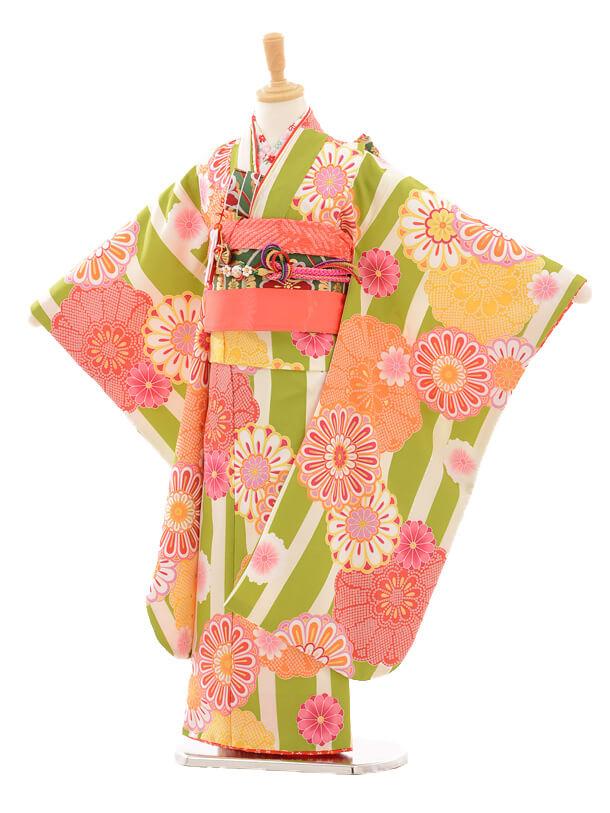七五三レンタル(7歳女の子結び帯)7177 花わらべ 縞に紋