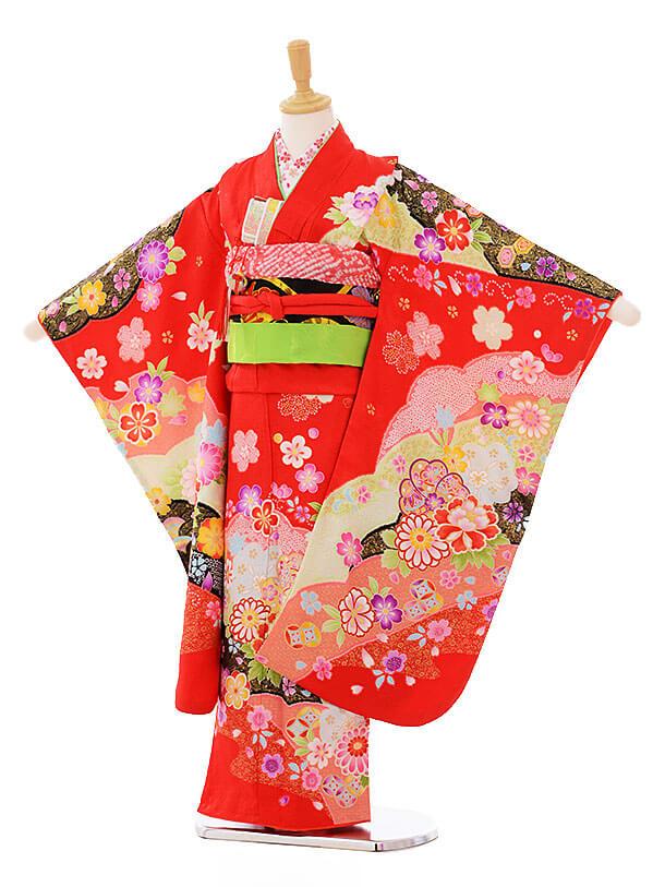 七五三(7歳女袋帯)7330 赤 ぼたん 菊 (正絹)