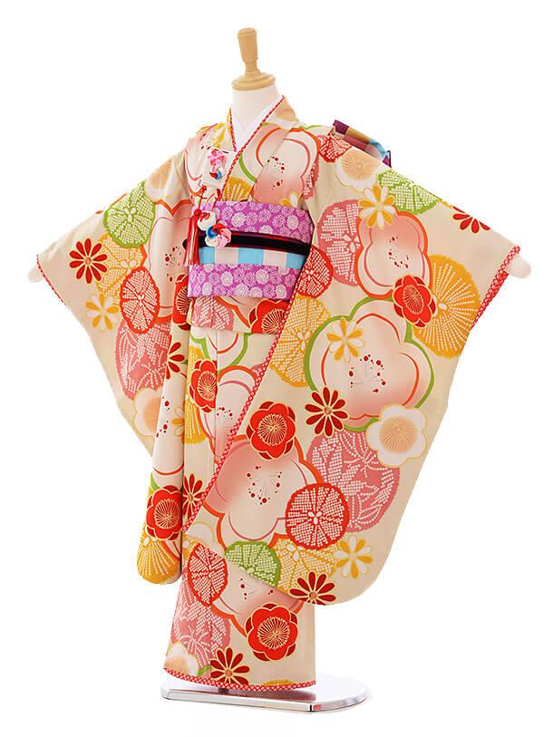 七五三(7歳女の子結び帯)7333 CIAOPANIC TYPY 菊に梅クリーム