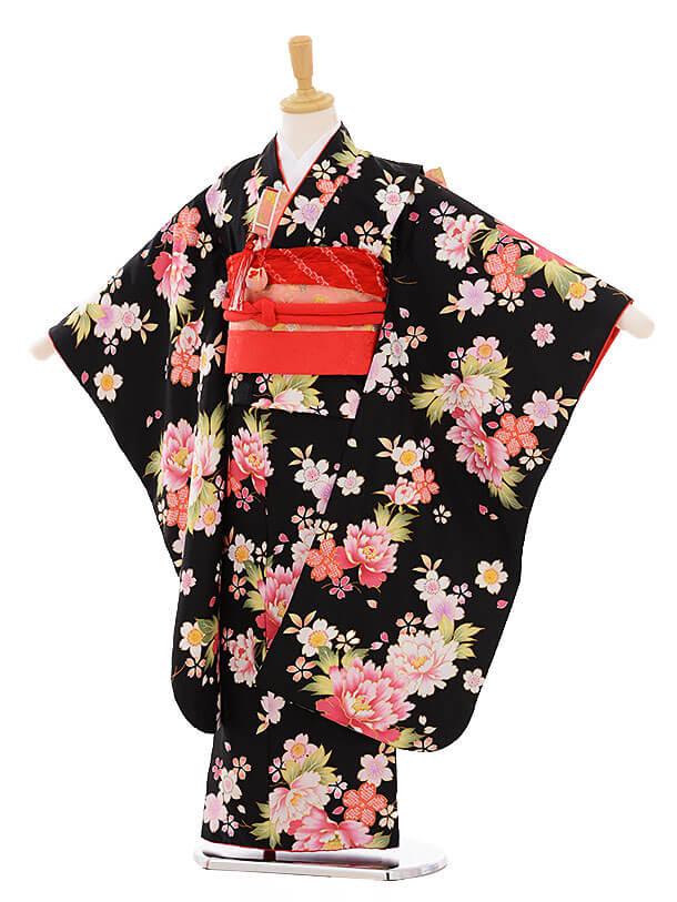 七五三レンタル(7歳女の子結び帯)7380 黒地 ぼたん桜
