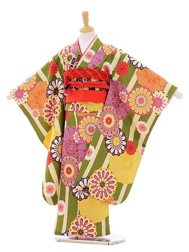 七五三(7歳女の子結び帯)7421 グリーン地 縞菊