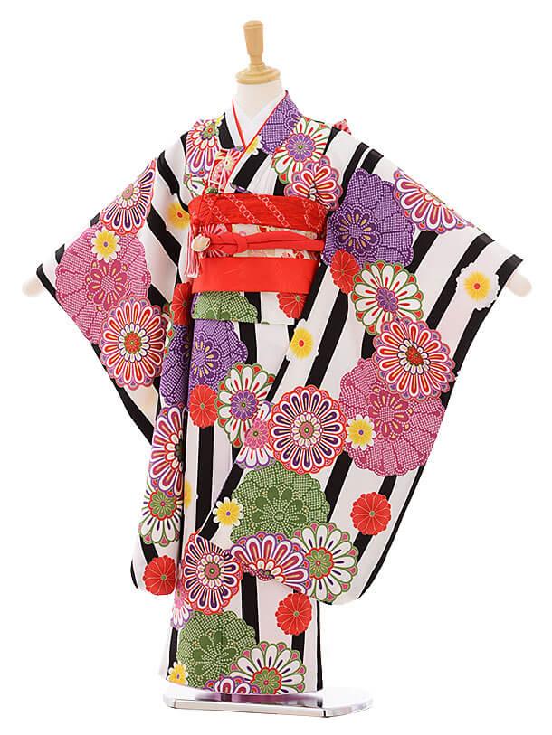 七五三レンタル(7歳女の子結び帯)7422 白地 縞菊