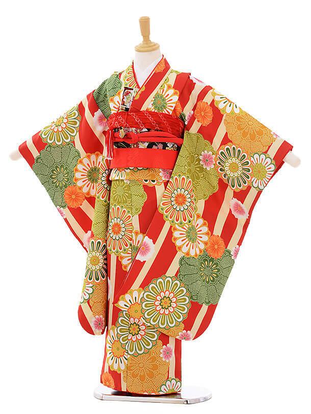 七五三レンタル(7歳女の子結び帯)7464 赤縞 菊