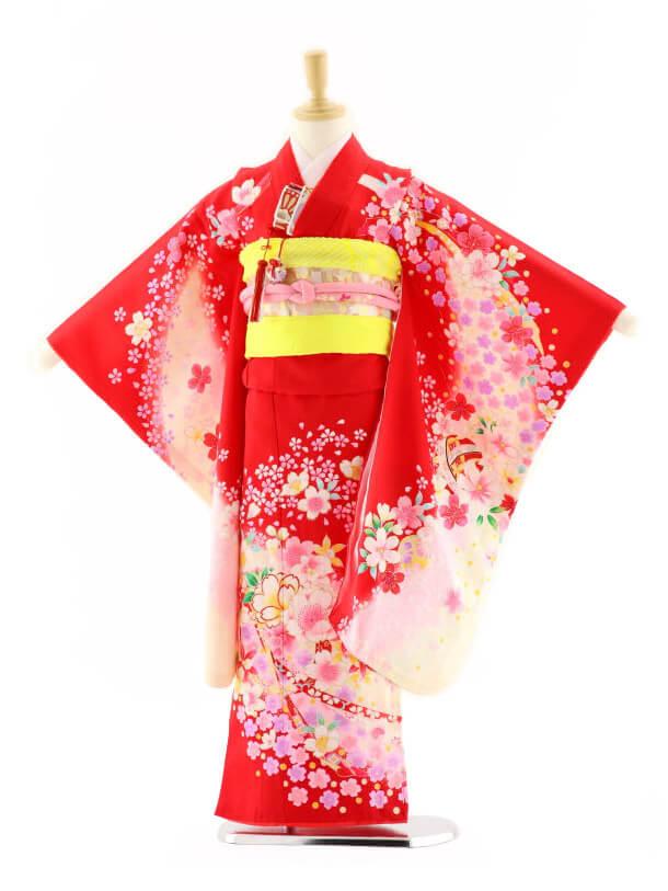 七五三レンタル(7歳女の子袋帯)7587 赤地ぼかし 桜ちらし (正絹)