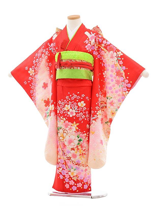 七五三(7歳女児結び帯)7714 正絹 赤地 桜