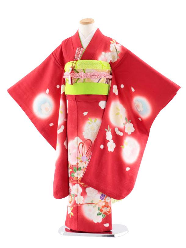 七五三(7歳女児袋帯) 最高級正絹 7741 手描き友禅 赤薬玉に桜散らし