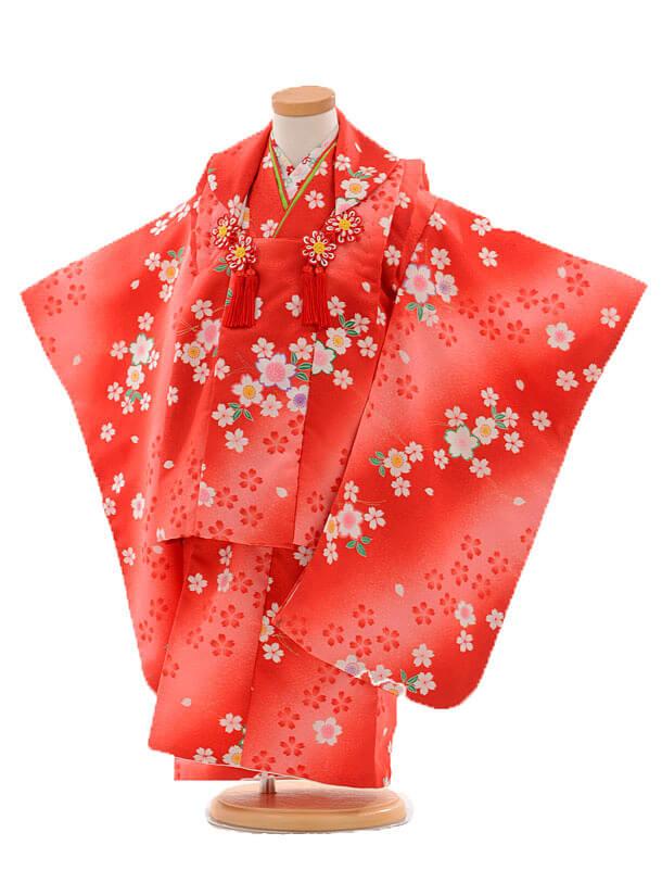 七五三レンタル(3歳女被布)D045 赤桜