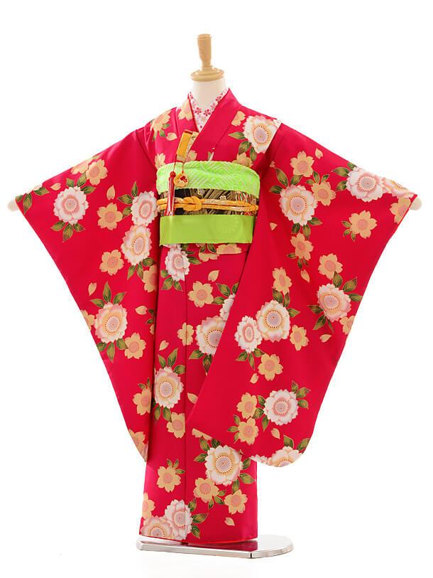 七五三レンタル(7女結び帯)D056 紅色桜花