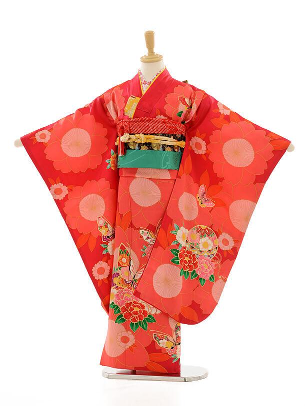 七五三レンタル(7女結び帯)D058 紅色花に蝶
