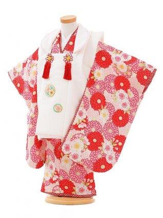 七五三レンタル(3歳女被布)F084 白×白に菊