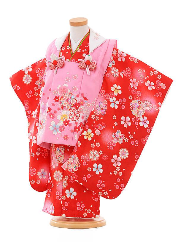 七五三レンタル(3歳女被布)F093 ピンク×赤 桜