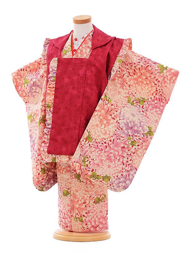 七五三(3歳女被布)F172 エンジ色×ピンク 菊