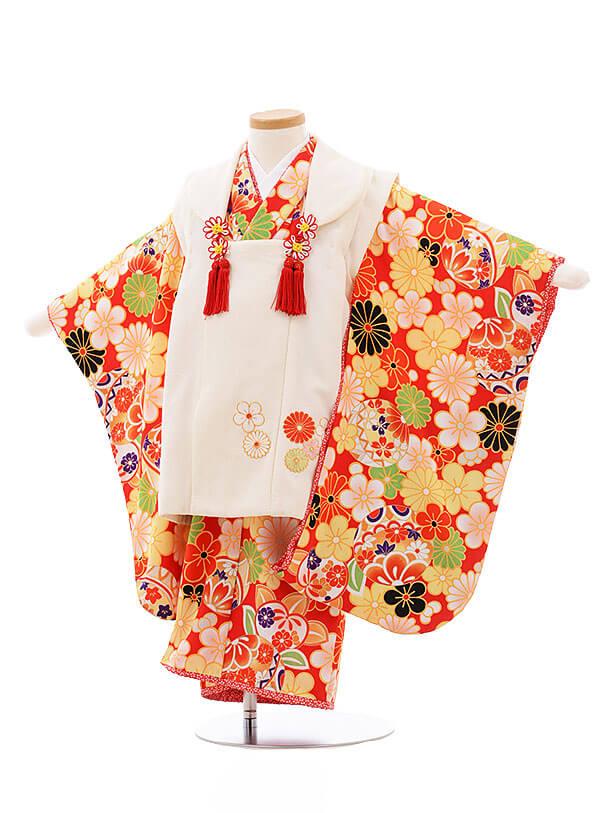 七五三レンタル(3歳女被布)F189 乙葉 白×赤 梅 菊