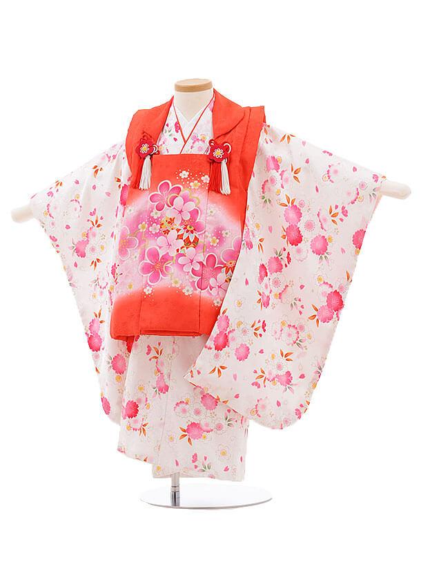 七五三レンタル(3歳女被布)F209 赤×白 桜