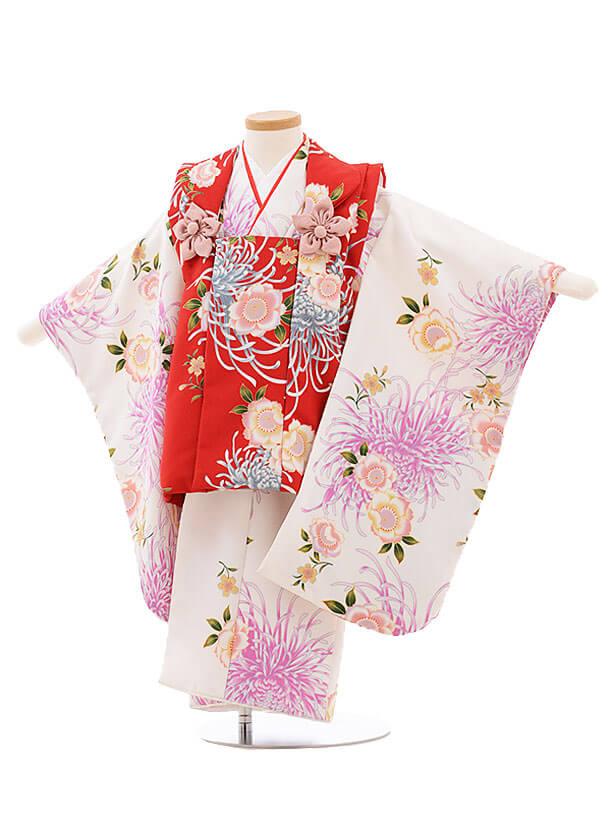 七五三レンタル(3歳女被布)F211 赤×白 桜 菊