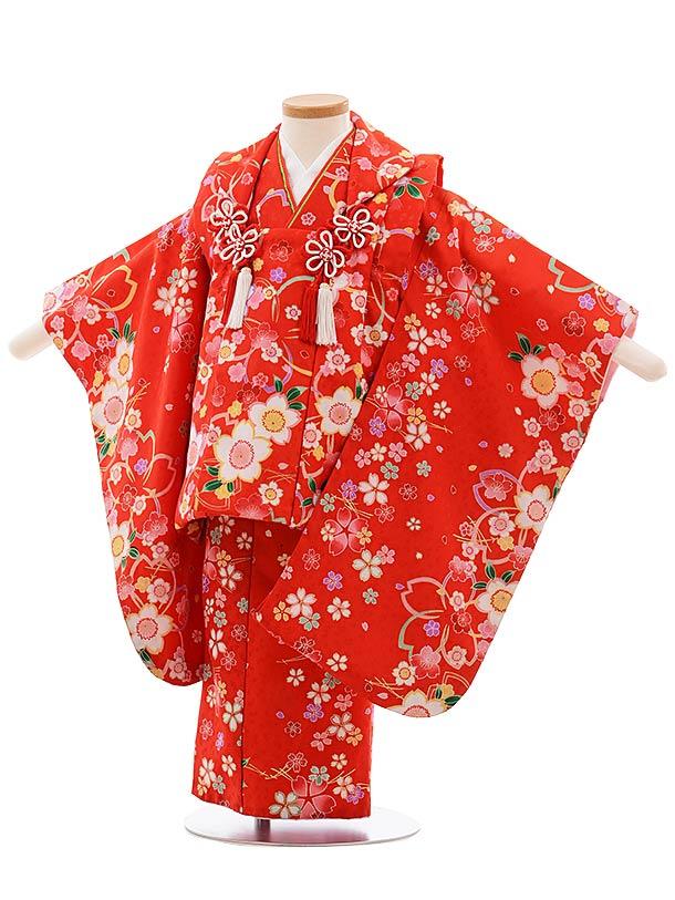 七五三(3歳女児被布)F395 赤地 桜